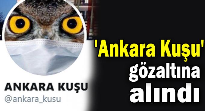 Ankara Kuşu Gebze'de gözaltına alındı!