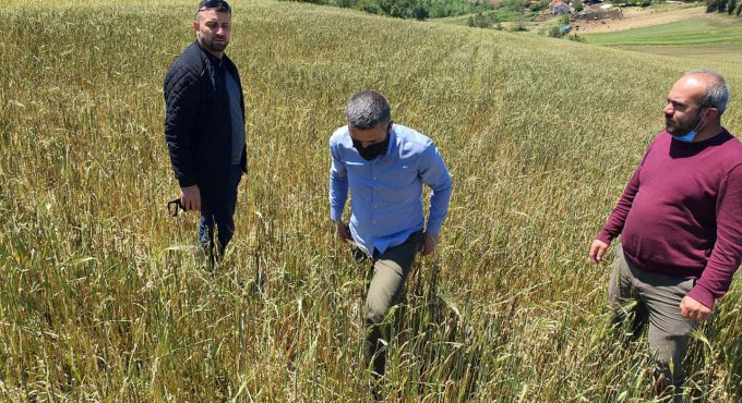 Büyükşehir'den, doludan tarlaları zarar gören çiftçilere destek