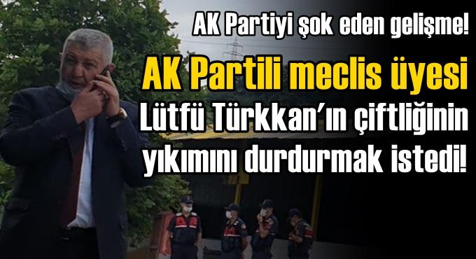 Yıkımı durdurmaya çalışan AK Partili meclis üyesi!