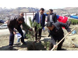 Hakkari'de Erdoğan İçin Hatıra Ormanı