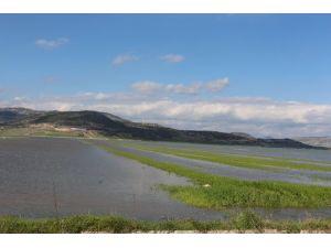 Barajdan Taşan Sular, Ovayı Göle Çevirdi!