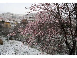 Baharda Kar Sürprizi