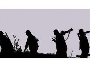 Terör Örgütü Yüksek Gerilim Hattına Zarar Verdi