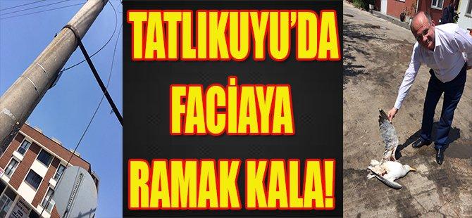 Tatlıkuyu'da Faciaya Ramak Kala!