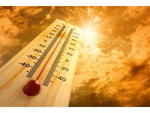 Aşırı Sıcaklar 500 Kişinin Ölümüne Yol Açtı