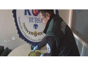 Uyuşturucu Türkiye'de Büyük Tehlike