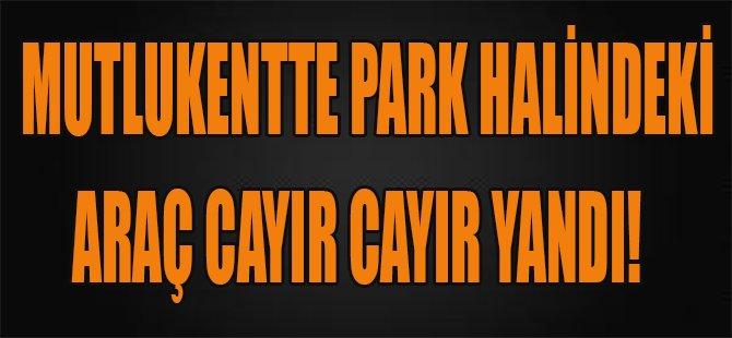 Mutlukentte Park Halindeki Araç Cayır Cayır Yandı!