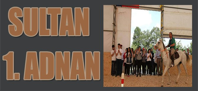 Sultan 1. Adnan
