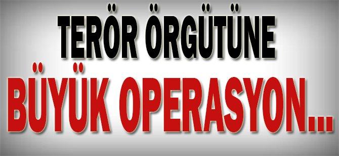 Terör örgütüne büyük operasyon