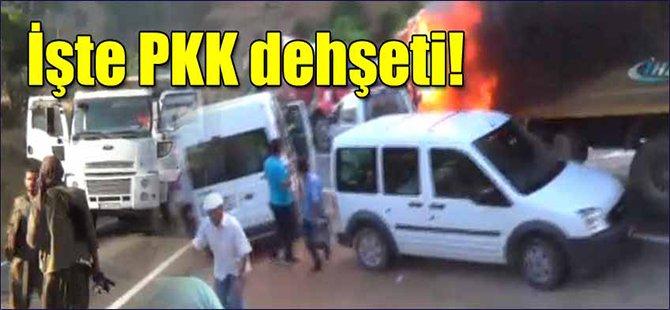 İşte PKK Dehşeti!