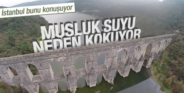 İstanbul Suyu Neden Kokuyor