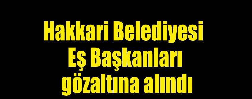 'Öz yönetim' açıklamasıma tutuklama ve gözaltılar