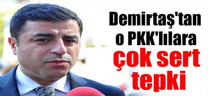 Demirtaş'tan O PKK'lılara Çok Sert Tepki!