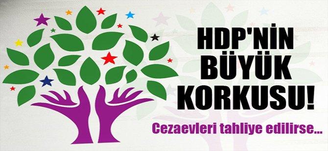 HDP'nin Büyük Korkusu!