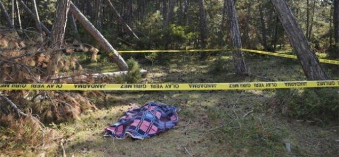 Hamile kadın, eşinin kestiği ağacın altında kaldı