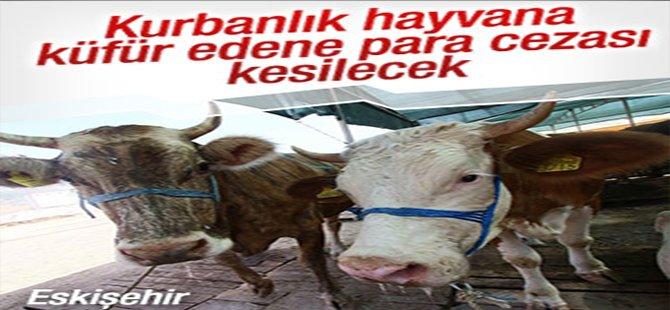 Kurbanlık hayvana küfür edene para cezası
