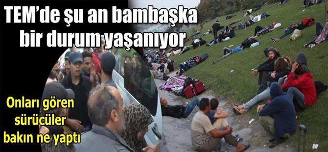 Edirne'ye doğru yürüyorlar!