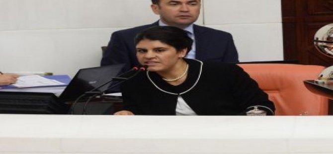 Baykal'a Dilek Öcalan eşlik edecek