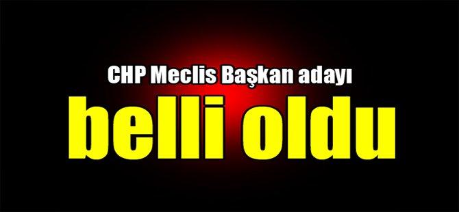 CHP Meclis Başkan adayı belli oldu