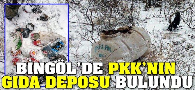 Bingöl'de PKK'nın gıda deposu bulundu