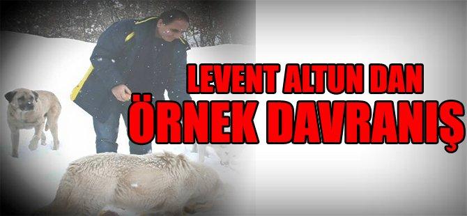 LEVENT ALTUN DAN ÖRNEK DAVRANIŞ