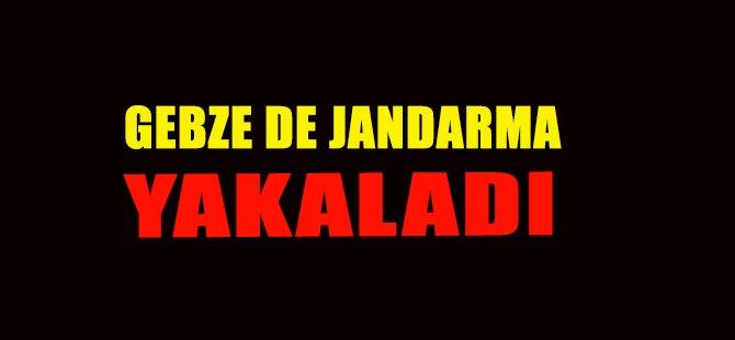 GEBZE DE JANDARMA YAKALADI