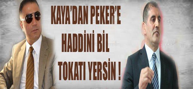 KAYA'DAN PEKERE HADDİNİ BİL TOKATI YERSİN !