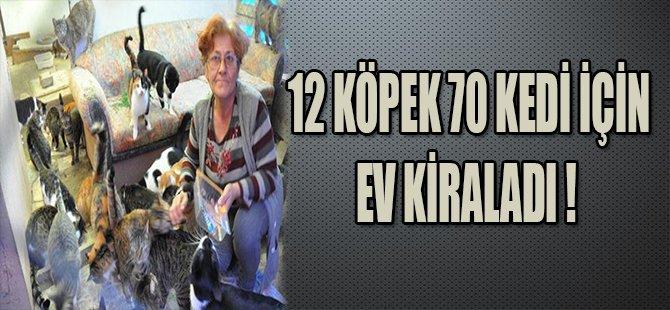 12 KÖPEK 70 KEDİ İÇİN EV KİRALADI !
