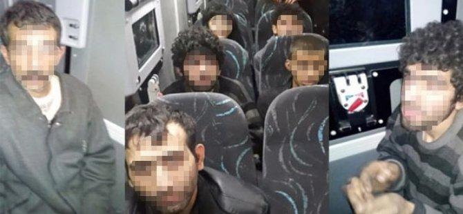 PKK'lı Terörist Askerin Ayağını Öpmek İstedi