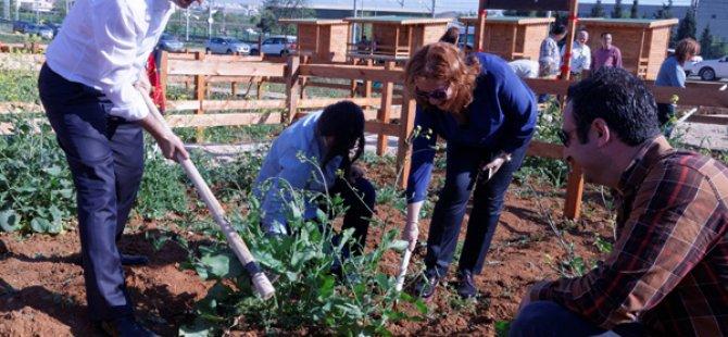 Gebze Teknik Üniversitesi'nde Hobi Bahçeleri