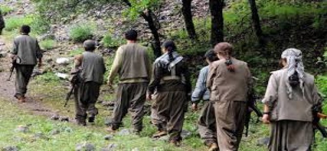 Muş'ta Terör rgütü PKK'ya Ağır Darbe