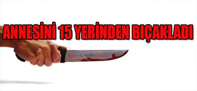 Annesini 15 Yerinden Bıçakladı