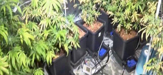Rezidansa Uyuşturucu Baskını