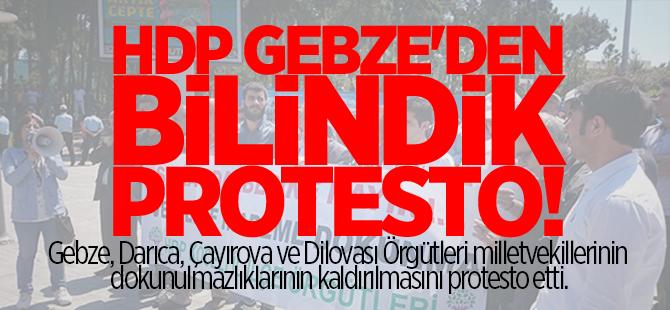HDP Gebze'den bilindik protesto
