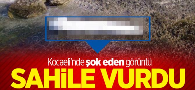 Kocaeli'nde sahile uçak yakıt tankı vurdu