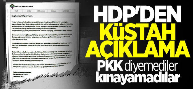 HDP'den küstah açıklama
