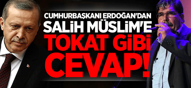 Cumhurbaşkanı Erdoğan'dan Salih Müslim'e tokat gibi cevap!