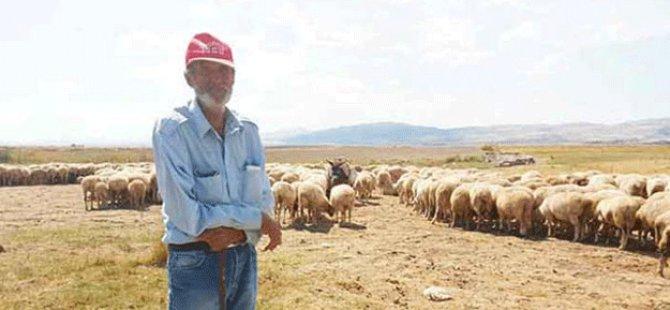 Çobandan tokat gibi sözler