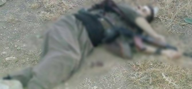 Hakkari'de 5 PKK'lı daha öldürüldü!