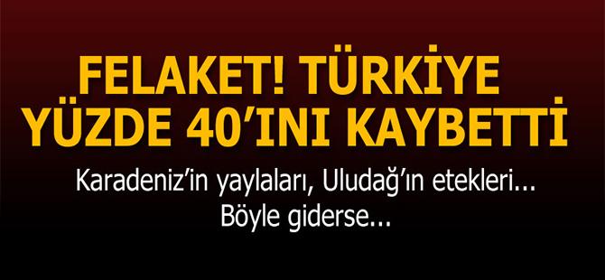 """""""Türkiye sulak alanlarının yaklaşık yüzde 40'ını kaybetti"""""""