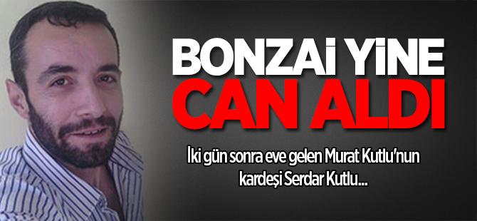 Bonzai yine can aldı