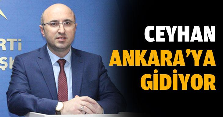 Ceyhan, 4 ilçe için yarın Ankara'da