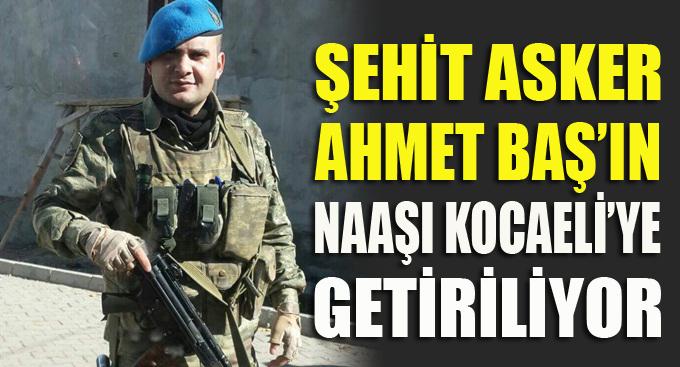 Şehit Ahmet Baş'ın cenazesi Kocaeli'ye getiriliyor!