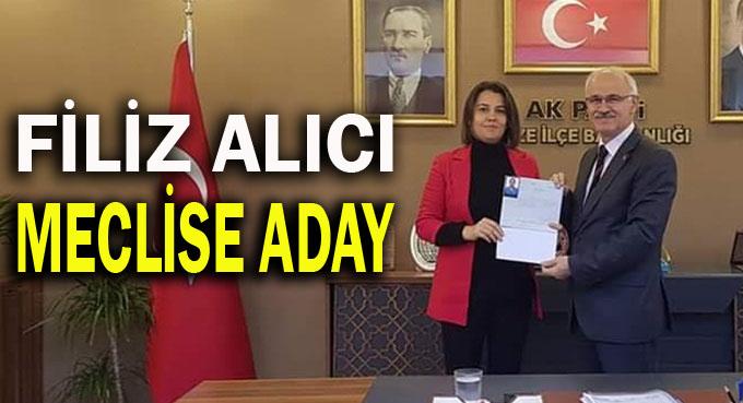 Filiz Alıcı, meclis üyeliğine talip!