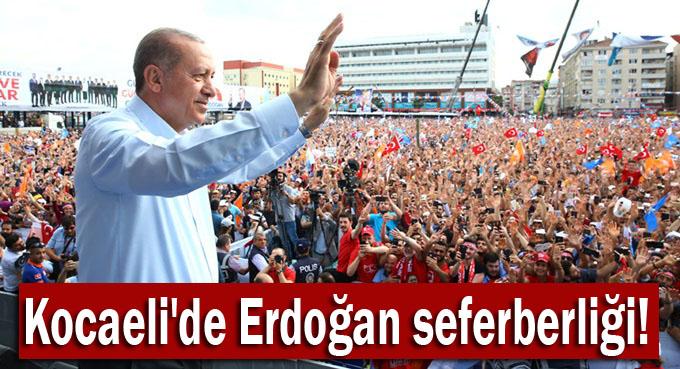 AK Parti Kocaeli'de Erdoğan seferberliği!