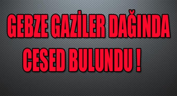 Gebze'de ormanlık alanda ceset bulundu