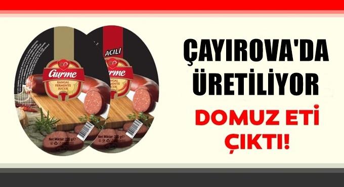 Çayırova'da üretilen o sucuktan domuz eti çıktı..!
