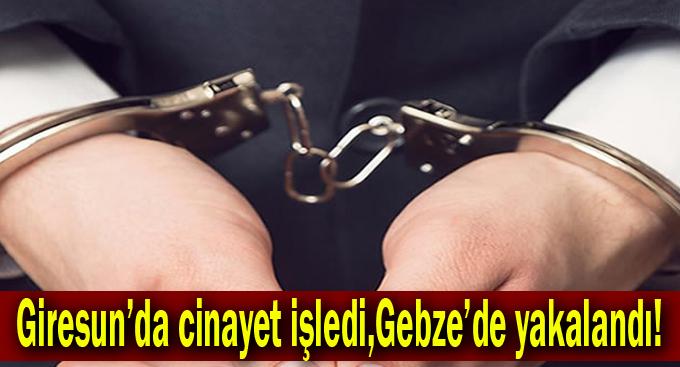 Giresun'da cinayet işledi,Gebze'de yakalandı!