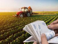 Tarım Kredi'den üreticilere 'faizsiz yem kredisi'