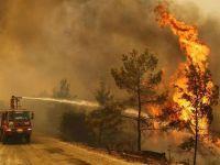 Kocaeli'den yangın bölgesine 17 araç ve 55 personel gitti!